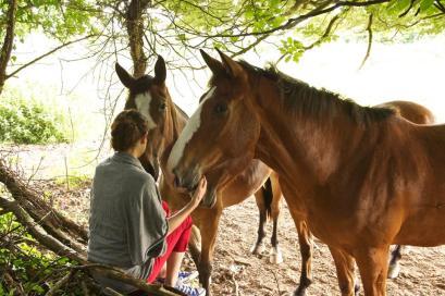 Horses speak straight from the soul