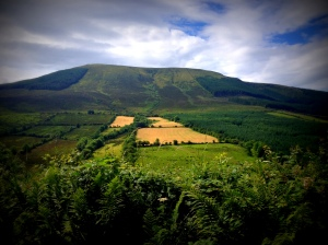 Keeper Hill, Co. Tipperary. Known in Irish as Ciamalta, the Guardian Mountain.