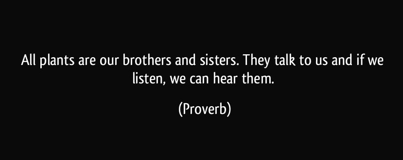 quote-all-plants-are-our-brothers-and-sisters-they-talk-to-us-and-if-we-listen-we-can-hear-them-proverbs-336092