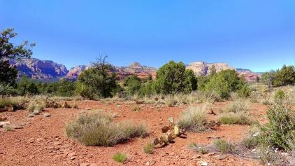 dry creek road views 7