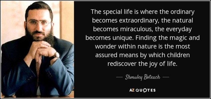 quote-the-special-life-is-where-the-ordinary-becomes-extraordinary-the-natural-becomes-miraculous-shmuley-boteach-76-89-71