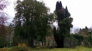 Ballymackeogh church and graveyard, Newport, Co. Tipperary