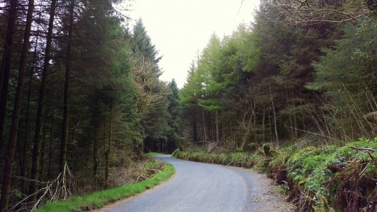 Tour road facing Tour, Co. Tipperary