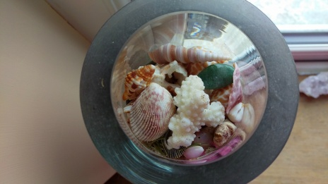 Sea shells collected from as far as Egypt, plus a rogue green crystal (green quartz I think)